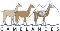 camelandes-logo