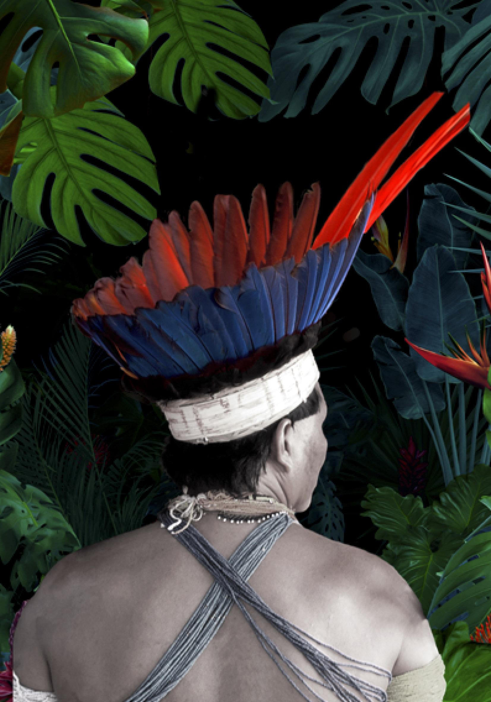 Exposition : Précieux poisons d'Amazonie