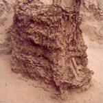 """Fardo avec structure latérale en roseau fouillé dans une nécropole à Armatambo © Luisa Diaz Arriola"""""""